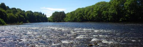 A pic of river ness